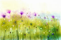 Abstract watercolor painting purple cosmos flowers and white wildflower. Wild flowers meadow, green field paintings. Hand painted floral, flower in meadows