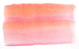 Watercolor painting on white paper royalty free stock image