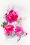 Abstract watercolor pink flowers Stock Photos