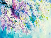 Abstract watercolor wisteria flowers. stock illustration