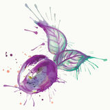 Abstract waterverf het schilderen pruimfruit Stock Fotografie