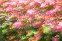 Abstract wave background image of azalea flowers with motion blur effect Stock Image