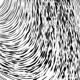 Black and White Wave Stripe Optical Abstract Background. Abstract Wave Element for Design, Stylized Line Art Background,  Curved Wavy Line, Smooth Wave Stripe Stock Photography