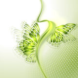 Abstract wave green background with butterfly Royalty Free Stock Photo