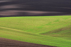 Abstract wavy fields on South Moravia Stock Photos