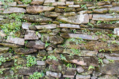Abstract weathered stone brick wall with vegetation background texture, rock, stone, background, abstract, black, wall, surface, o Royalty Free Stock Photo