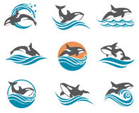 Abstract whale icons set Royalty Free Stock Image