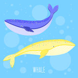 Abstract whale. Stock Images