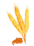Abstract wheat ears with ripe. L vector illustration Stock Photo
