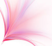 Abstract white background. Colorful explosion of rose stripes. F Royalty Free Stock Photo