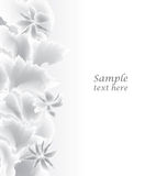 Abstract White Background. Floral  border. Royalty Free Stock Images