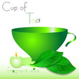 Abstract white background with green cup of tea and mint leaves Royalty Free Stock Photo