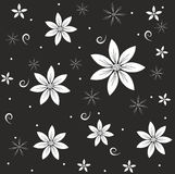 Abstract white flowers on a black background.  Royalty Free Stock Photo
