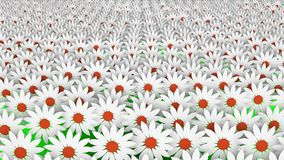 Abstract white flowers in rows stock footage