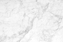 Abstract white marble background with natural motifs. The Abstract white marble background with natural motifs Stock Images
