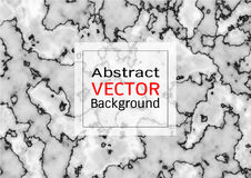 Abstract white grey marble texture, Vector pattern background Royalty Free Stock Image
