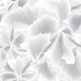 Abstract White Seamless Vector Background Texture Royalty Free Stock Photos