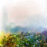 Abstract wildflowers, watercolor painting flower in meadows Royalty Free Stock Images