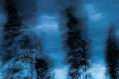 Abstract. The wind blows the trees . Royalty Free Stock Image