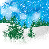 Abstract winter background. With pine Royalty Free Stock Photos