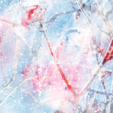 Abstract winter background with ashberry Royalty Free Stock Photos