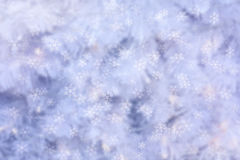 Abstract winter background with snow flakes falling Stock Images