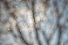 Abstract winter background, snowflakes and snowing time Stock Image