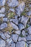 Abstract winter background. Abstract winter texture background. Stones, snow and grass in nature pattern. Close up image Stock Photography