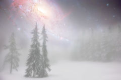 Abstract winter fairy landscape. Misty fairy winter night landscape with pine trees and abstract night sky- elements of this image are furnished by NASA Stock Photos