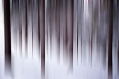 Abstract winter forest Royalty Free Stock Image