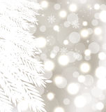 Abstract winter glowing background with fur-tree Stock Photo