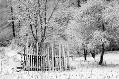 Abstract winter landscape Stock Photo