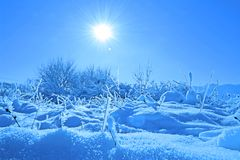 Abstract Winter Landscape and The Sun royalty free stock photo