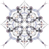 Abstract winter pattern in the Art Nouveau style Royalty Free Stock Photo