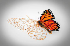 Abstract Wired Low Poly Butterfly. 3d Rendering Royalty Free Stock Image