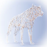 Abstract Wired Low Poly Wolf or Dog. 3d Rendering Royalty Free Stock Photos