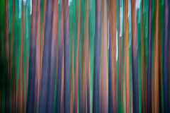 Abstract wood Royalty Free Stock Photography