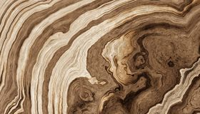 Abstract wood background. Texture of roots of tree with wavy lines and age rings. Abstract background. 2d illustration Royalty Free Stock Photography