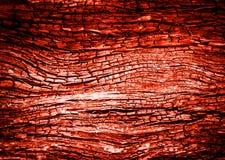 abstract wood charcoa fire burn texture Stock Photos