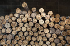 Abstract wood in  a fireplace. Stock Image