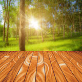 Abstract Wood Plank and Nature Background Royalty Free Stock Images