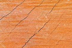 Abstract wood texture Stock Photo
