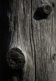 Abstract wood trunk sculpture Royalty Free Stock Images