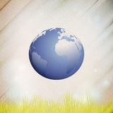 Abstract wooden background of globe with grass,. Vector illustration Stock Photography