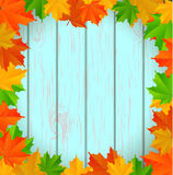 Abstract wooden background with maple leaves Stock Photography