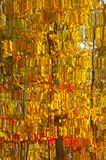 Abstract Yellow Autumn Leaves Reflection Royalty Free Stock Photo