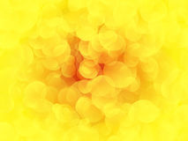 Abstract yellow circle background Royalty Free Stock Photography