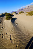 Abstract yellow dune beach  hil   mountain in the   lanzarote sp Royalty Free Stock Photos