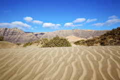 Abstract yellow dune beach  hil and mountain in the   lanzarote Stock Photography