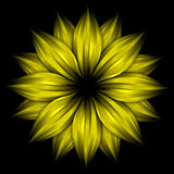 Abstract yellow flower on black background Stock Images